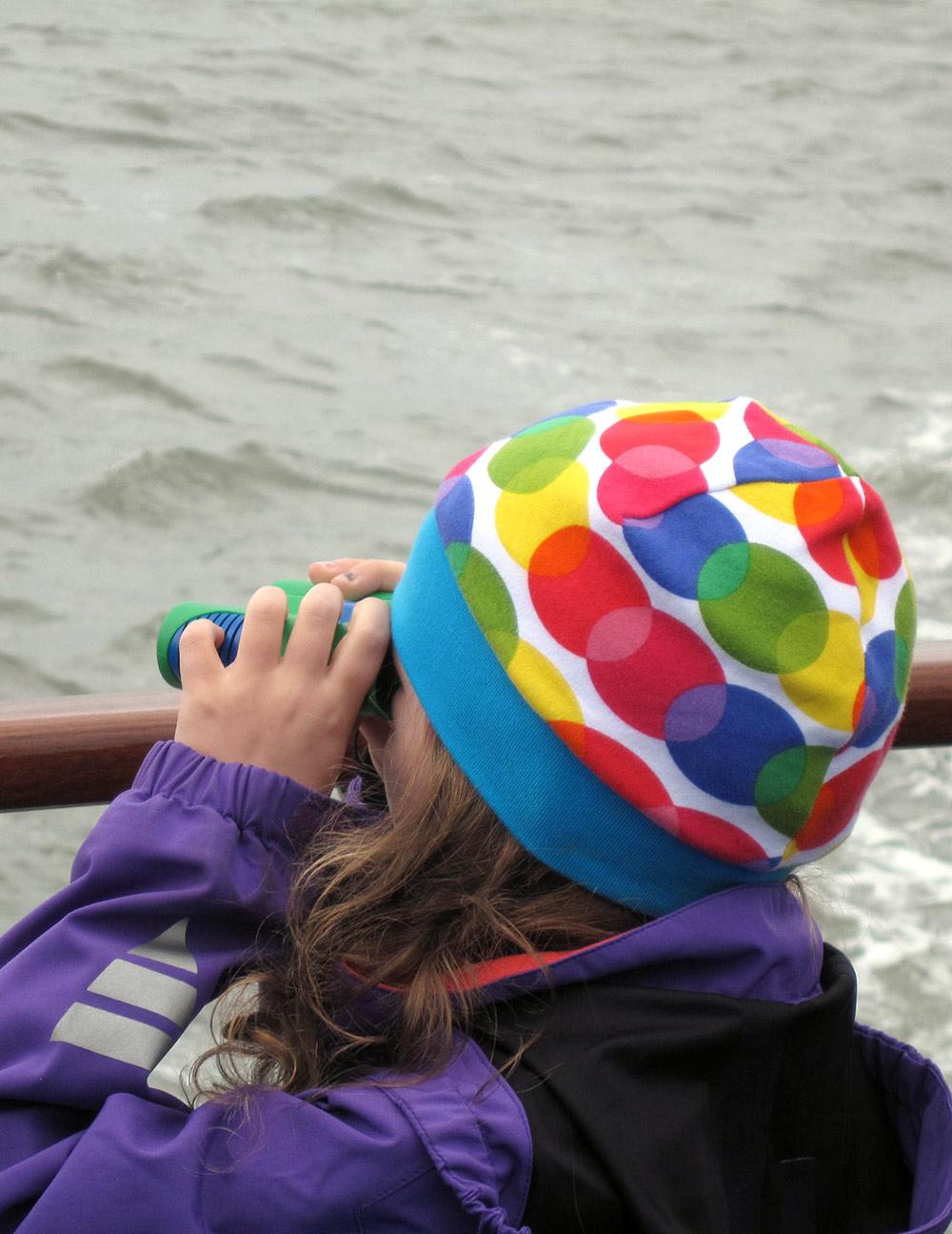 Schifffahrt auf Amrum: kegelrobben-Watching