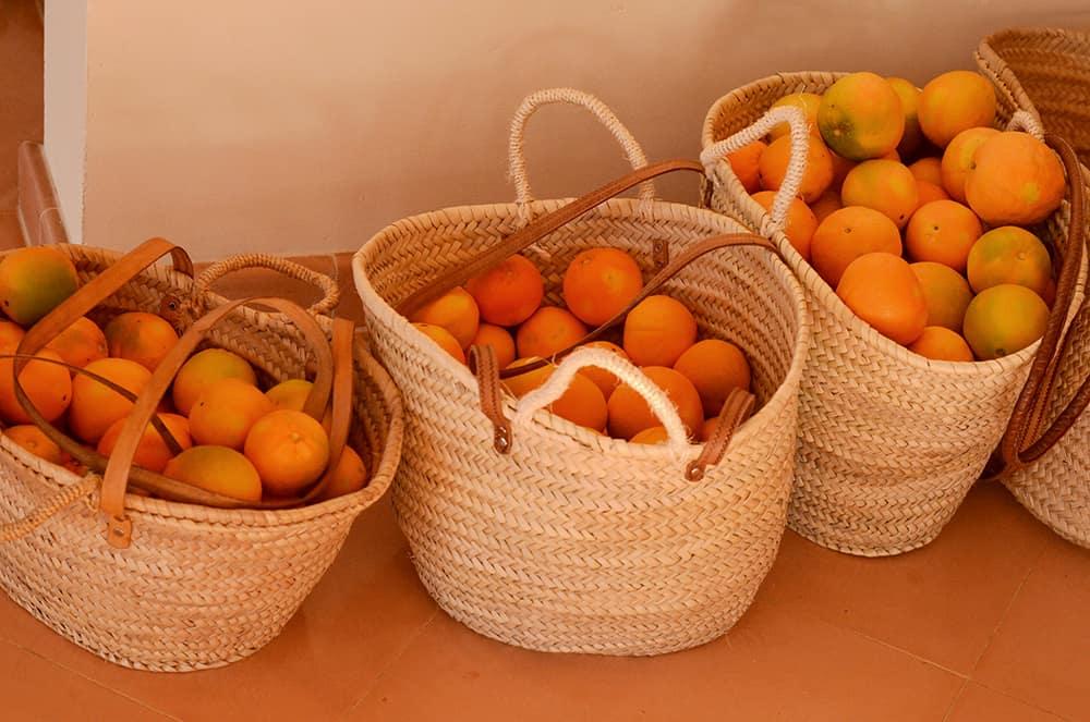 Orangenschwemme aus dem Garten in Mallorca