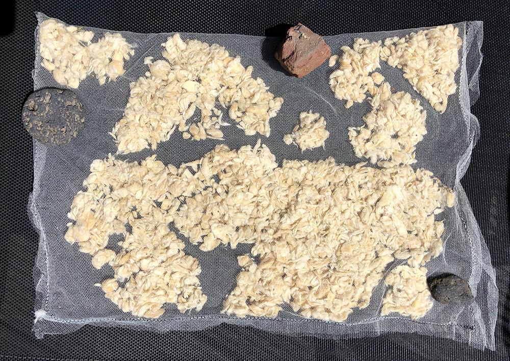Pflanzenfasern aus Pappelschnee, Öko Flocken als Füllmaterial